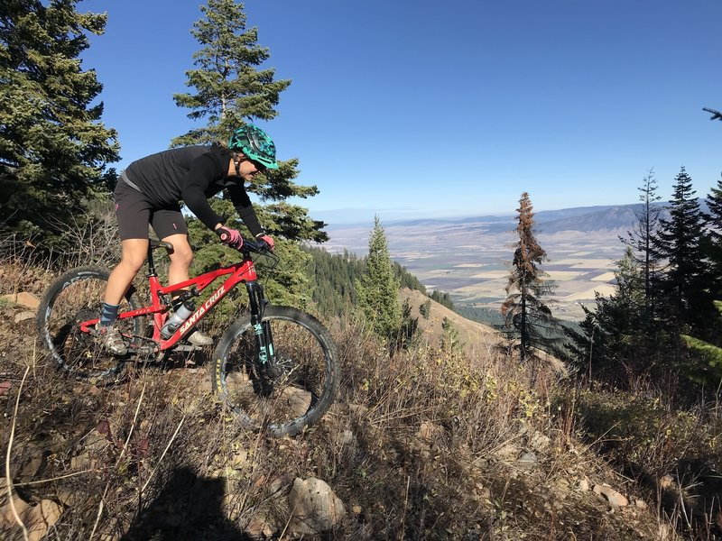Upper Ridgeline Trail 320/Doing Time Trail 789--gravity rules from here down...