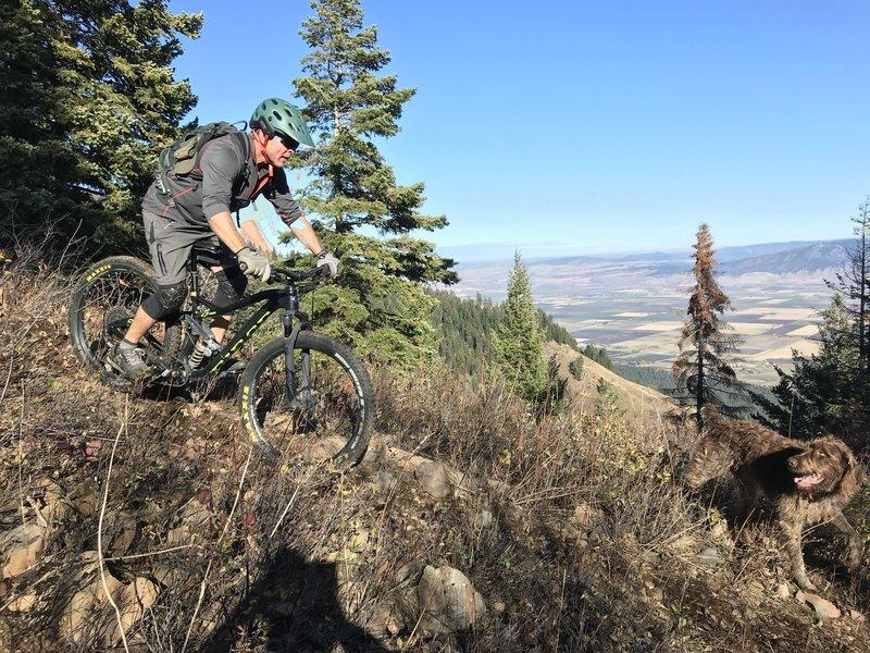 Gravity begins in pull down Ridgeline Trail 320...