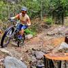 This trail is tirelessly maintained by volunteers like Erik, seen here riding past his sawyering handiwork.