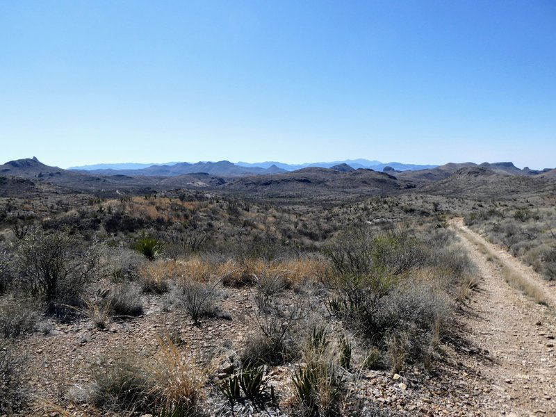 Near the north end of the Rancherias Trail