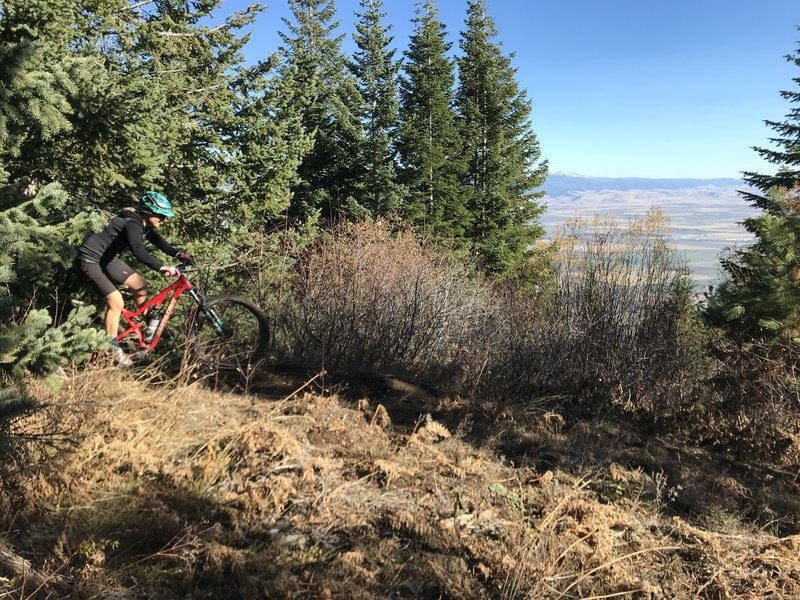 Jumps drops berms on Ridgeline Trail 320