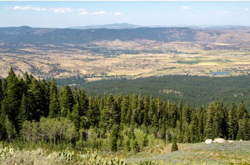 View of Honey Lake Valley
