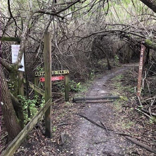 Connector between Lollipop Pop and Far East. A good meet spot where trails meet.