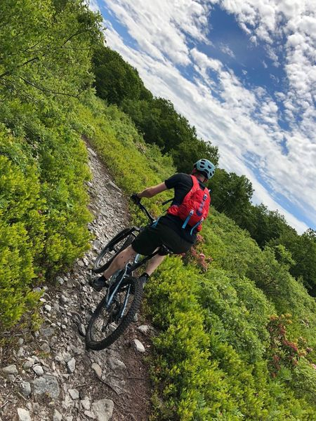 Climbing the Blueberry trail.