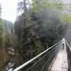 Pedestrian suspension bridge at Drift Creek Falls