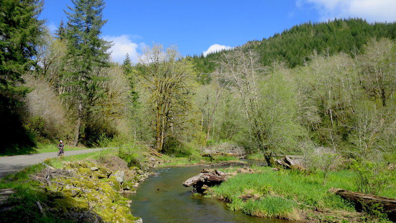 Gravel Creek Road near the confluence of Gravel Creek with the Siletz River.