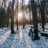 Fat Bike in the cedars