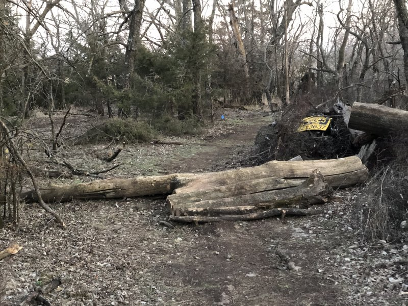 downed trees have been utilized in log rolls in a few places along the route