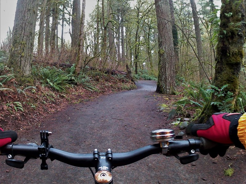 Clockwise on the upper section of the loop. The trail is crushed volcanic material that does not get muddy.