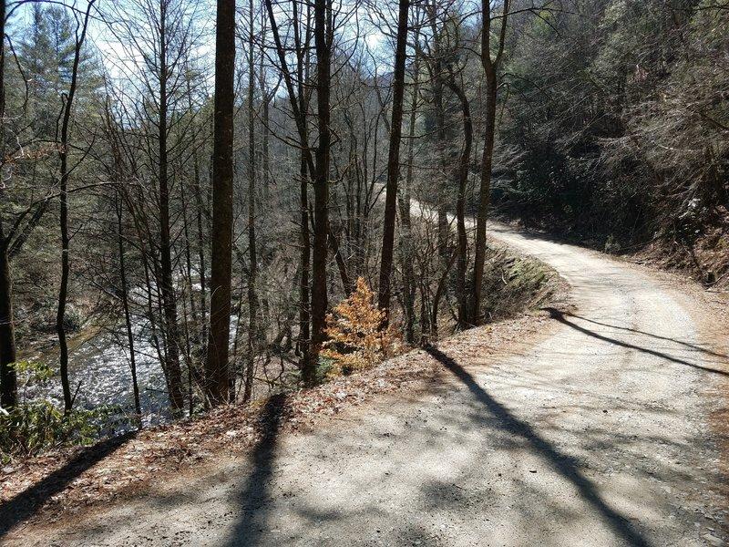 Cooper Creek Road with Cooper Creek