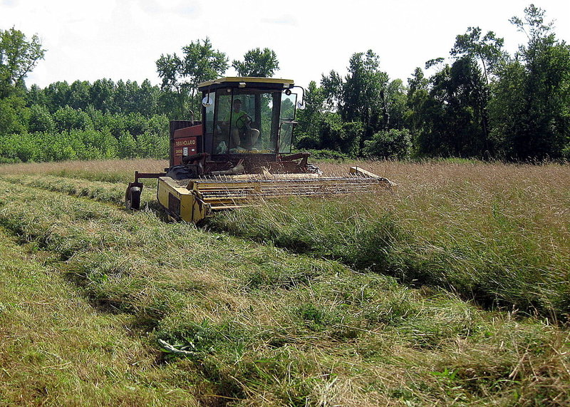 Farmer mowing hay in Genesee River Valley near Angelica, NY