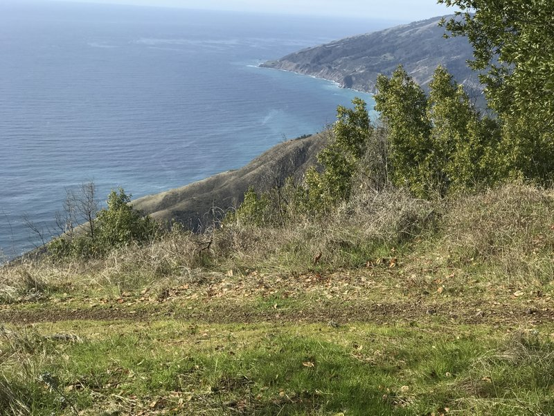 View north from Prewitt Ridge.