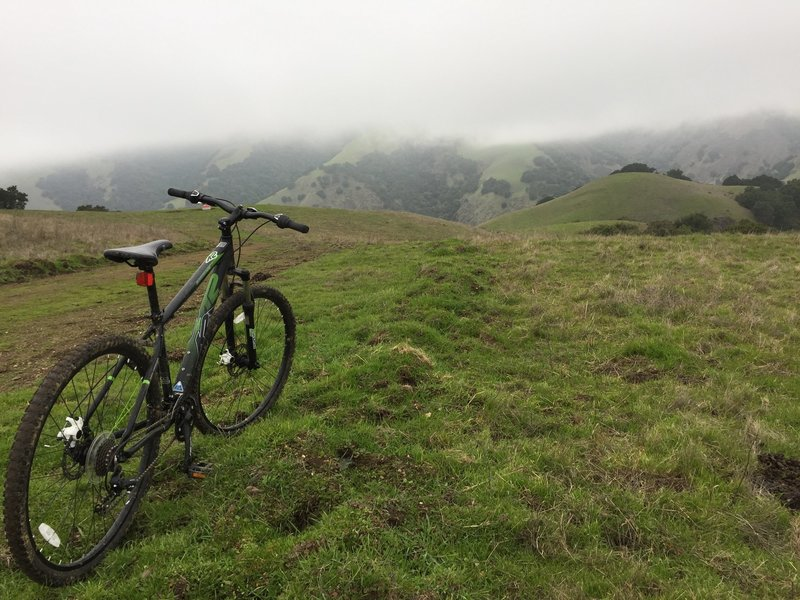 Magical misty afternoon on the Ridge