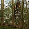Jump impression in this wood