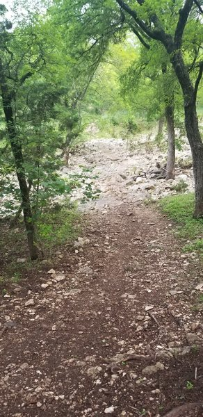 Trail headed down and over Williamson Creek (currently dry)