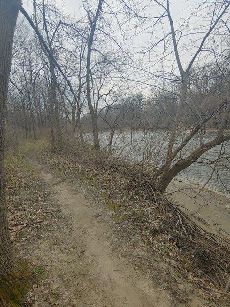 Scenic leg of trail running along side Lizard Creek