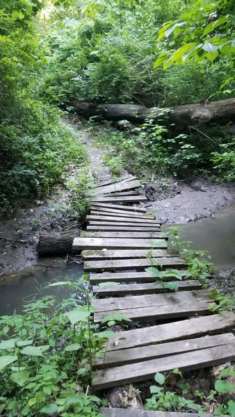 Dicey bridge. Several others washed out. This trail system would be 4 out of 5 stars but has unfortunately fallen into disrepair. ;-(