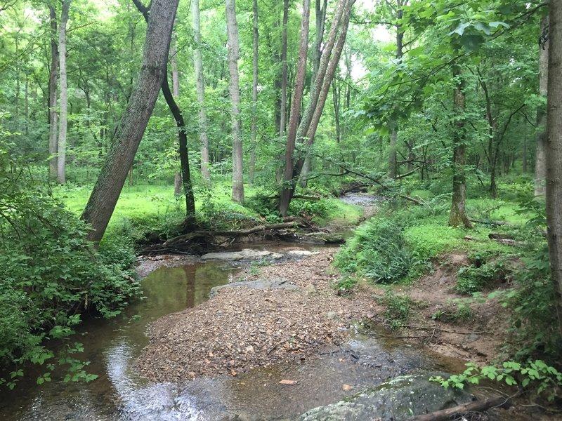 Near Seneca Creek