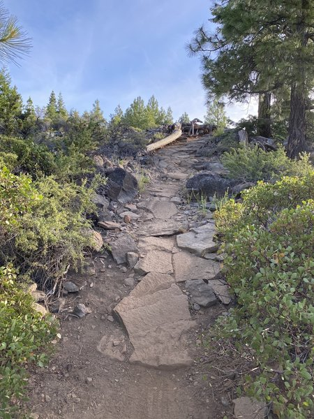 Some of why this trail has a black diamond rating