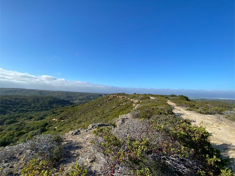 Lookout Ridge View