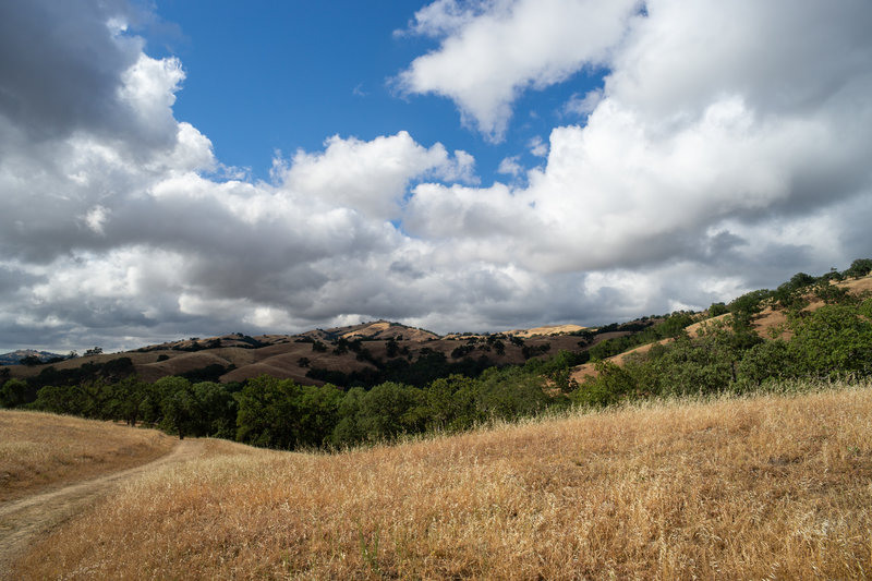 Looking back toward San Jose