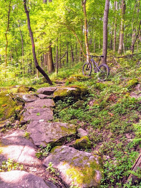 Nice rock section before the rocky switchbacks.