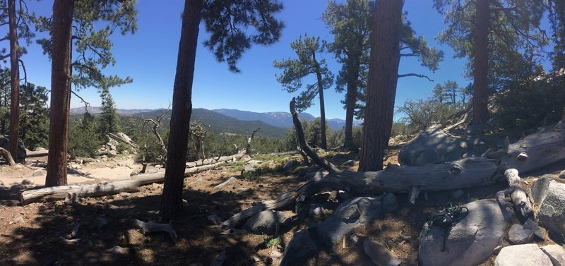 On top of John Bull and looking South-East at San Gorgonio Mountain.