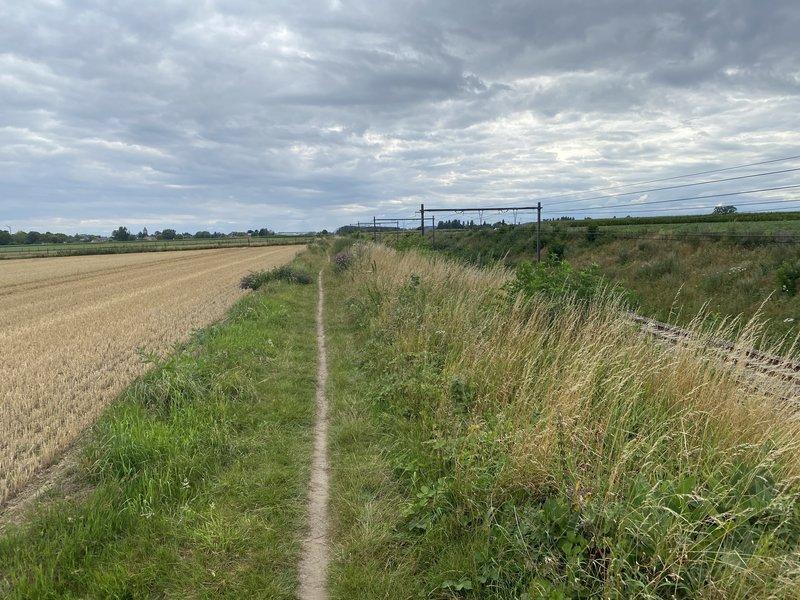 Single trail near the railway line Oudenaarde-Kortrijk