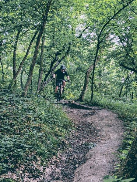 Flow on Hillside Trail