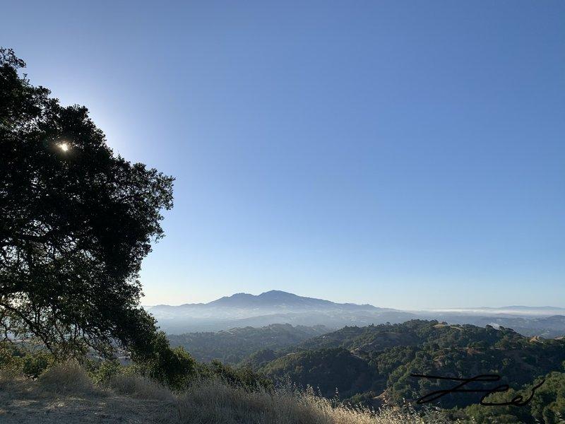 Briones peak view