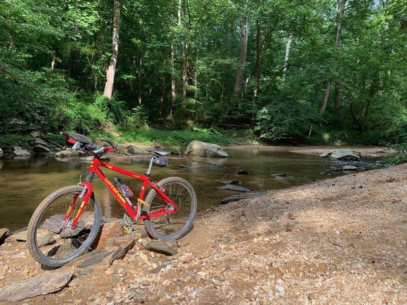 Creek Bank off Cabin John Trail