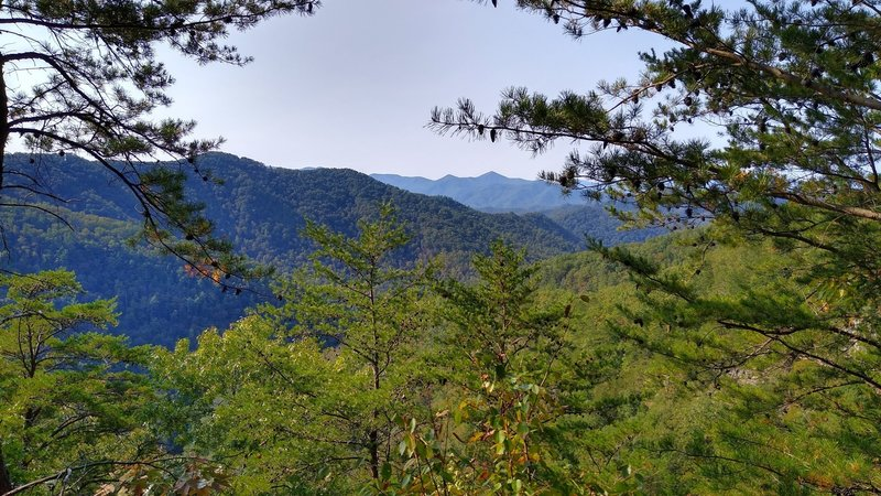 Scenic view from a rocky outcrop on Paint Creek Trail.