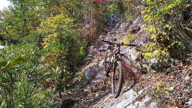 Rocky narrow descent along the ridge on Paint Creek Trail.