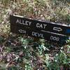 Trail sign at intersection of Alley Cat and Devil Dog.
