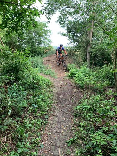 Waggoner's Run Hill.