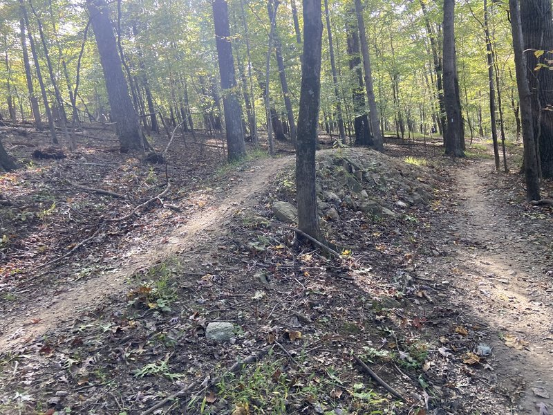 Great features on the Upper Rock Creek Trail.