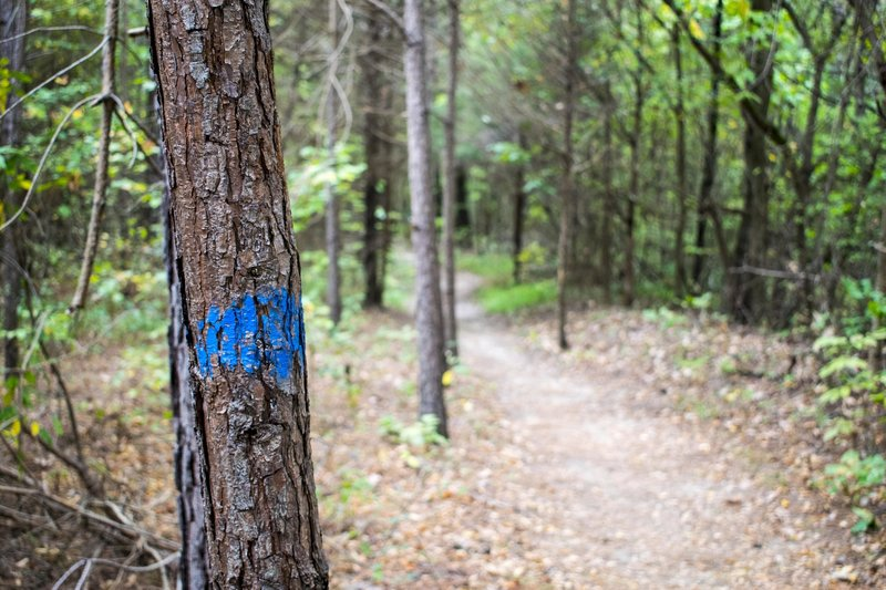Trails are often well-marked.