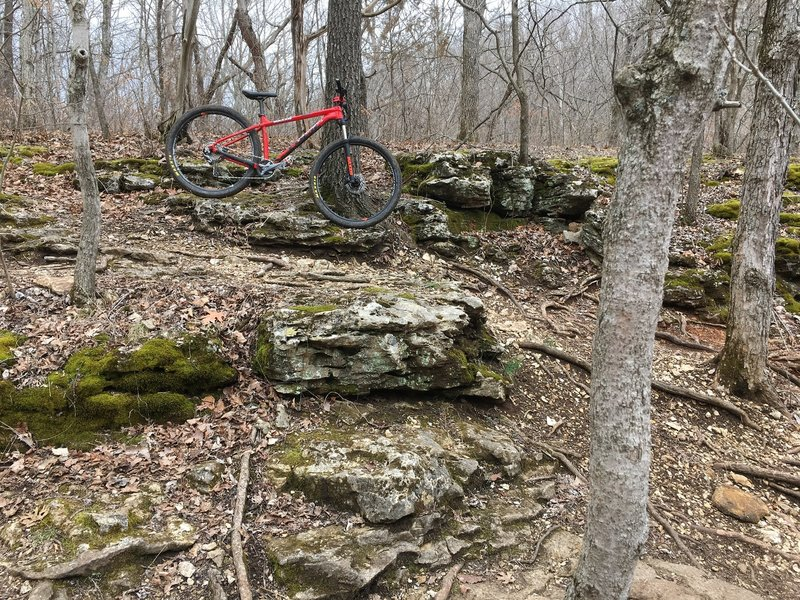 Nice rocky section