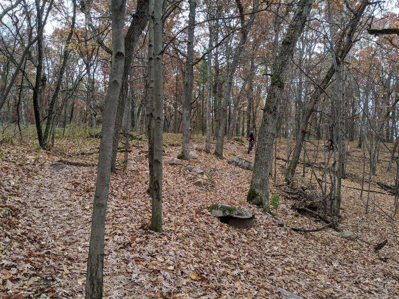Blue flow trail in fall.