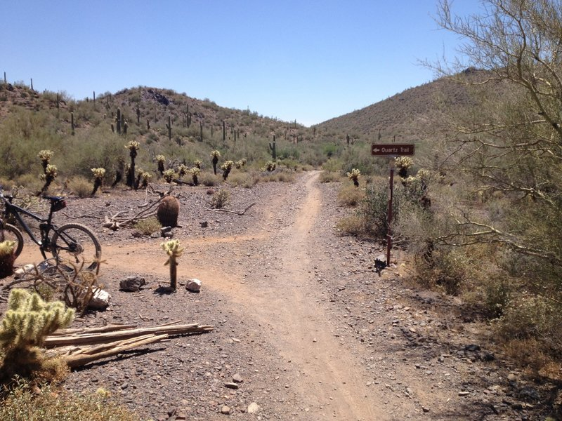Junction of Quartz Trail and Slate Trail