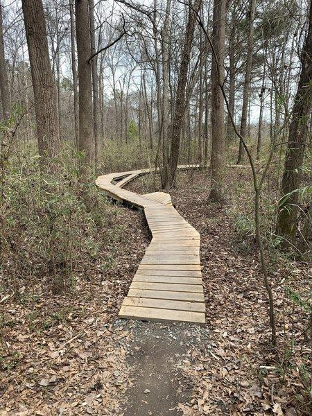 Another boardwalk on the green boardwalk trail