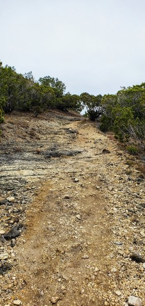 More steep and rocky trail views