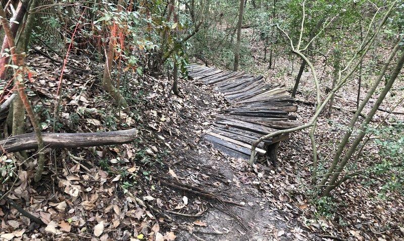 Ledge on Timbergrove Gully Trail