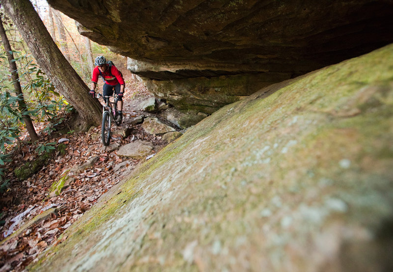 There aren't many technical sections on Grand Gap.  The ones that you will find travel through spectacular settings.