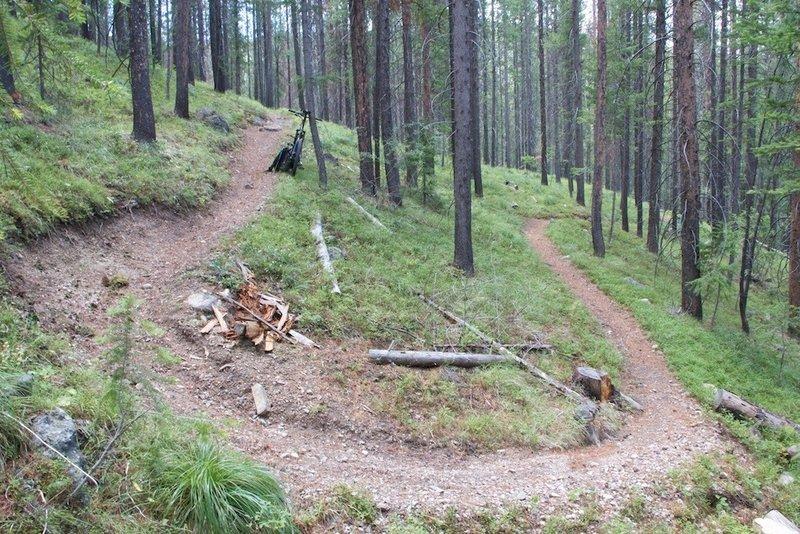 One of 29 switchbacks on Porcupine Creek Trail.
