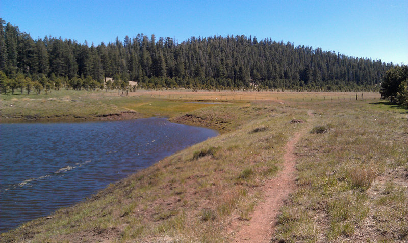 Heading out into the meadows of the Dry Lakes.