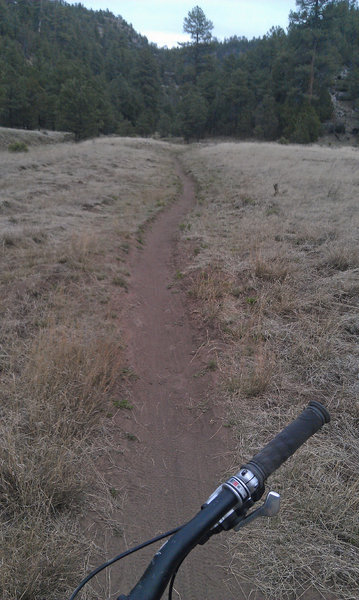 Smooth singletrack as you approach the head of Walnut Canyon.