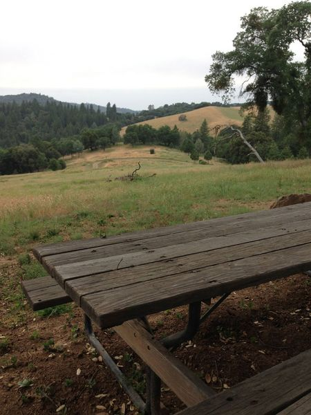 View of trail from a picnic table at Pine Mountain Lake Campground Trails