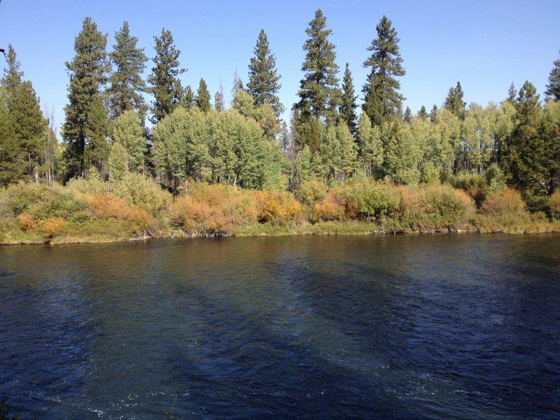 Fall colors along the Deschutes River