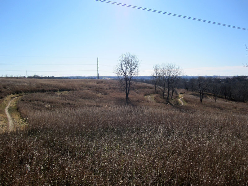 Prairie section at the top of the hill.